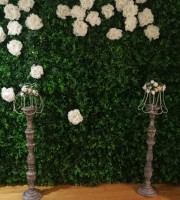 Flower Wall - Green Wall