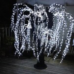 Willow Tree LED