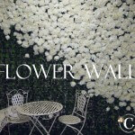 White Flower Wall 3m wide