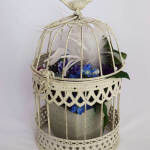 small cream birdcage