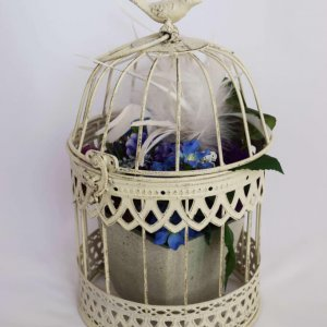 small cream birdcage