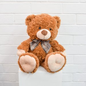 large brown teddy bear hire