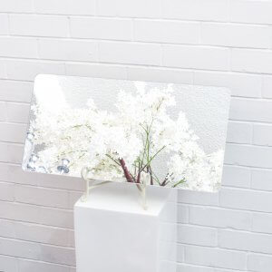 Rectangle Display Mirror 1