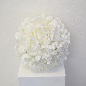 white peony ball