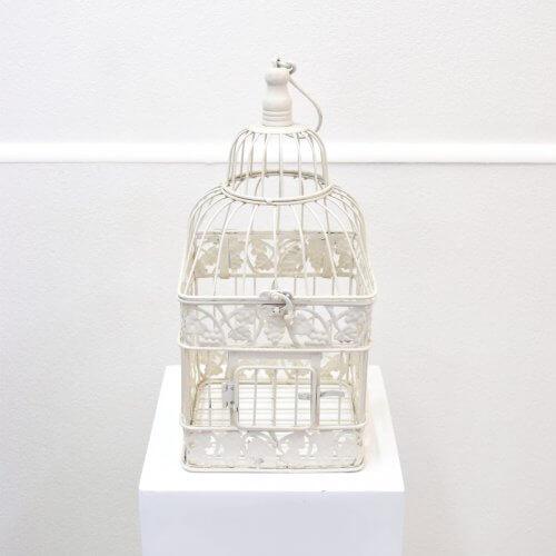 bird cage square