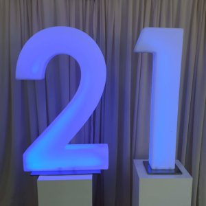 21 LED numbers